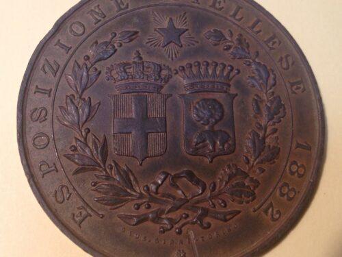 UNA NUOVA MEDAGLIA DELL'ESPOSIZIONE BIELLESE DEL 1882